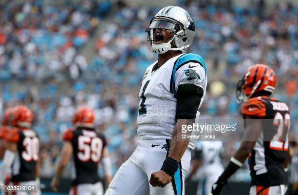 Cam Newton of the Carolina Panthers reacts against the Cincinnati Bengals in the fourth quarter during their game at Bank of America Stadium on...