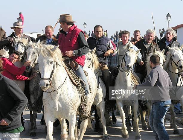 Camargue cowboys herding bull through village