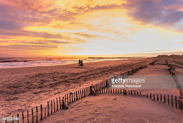 Camargue - View of the beach at sunset