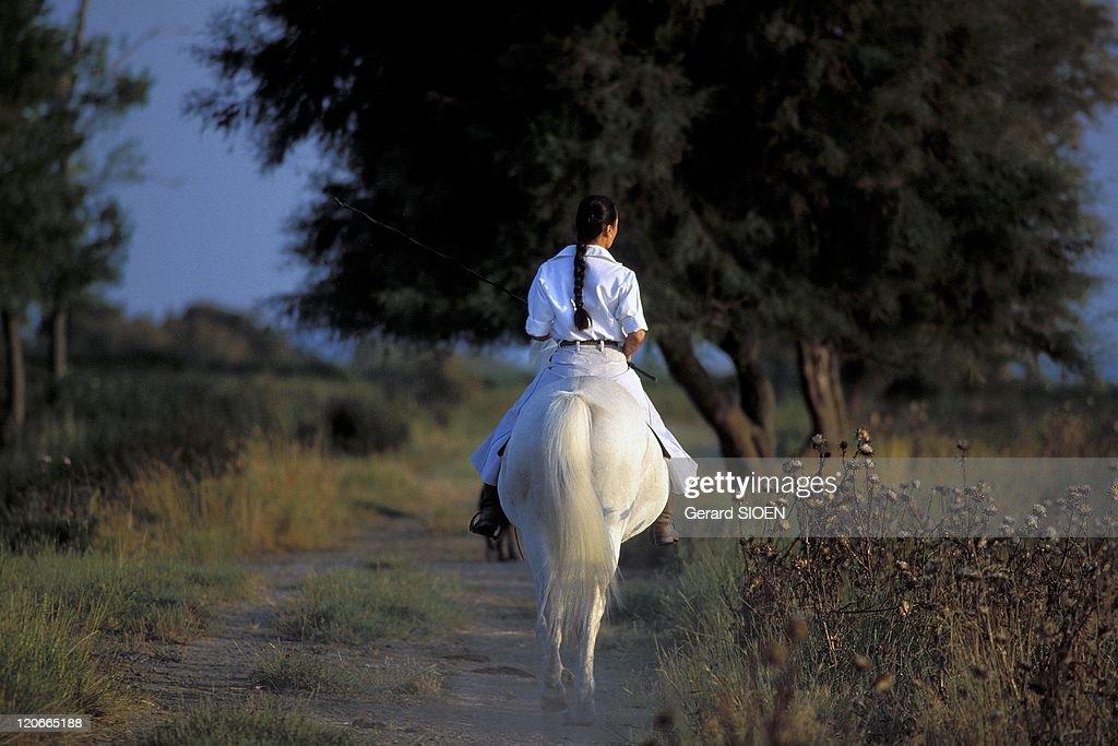Camargue Woman On Horseback In Camargue, France - : Fotografia de notícias