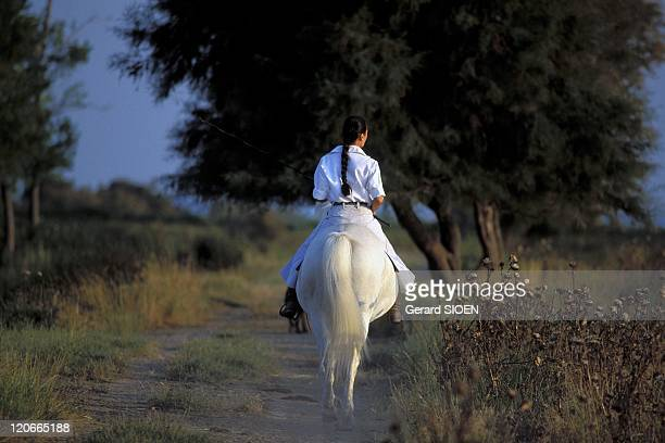 Camargue woman on horseback in Camargue France Bouches du Rhone regional natural park of Camargue a camargue horse is a breed of small gray rustic...