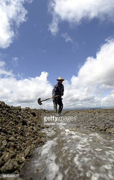Jose Navarro 35 diverts rain water that flooded a bean field at the Lazy S farm on Las Posas Road in Camarillo