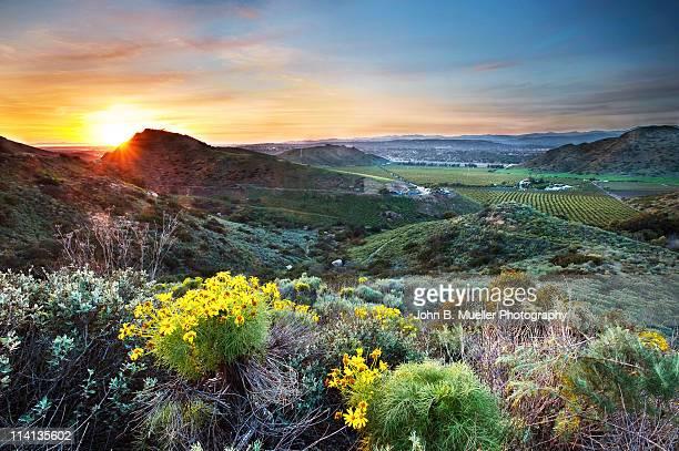 Camarillo Sunset