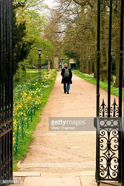 Cambridge is known all over the world as one of England's most prestigious university cities. Here, a man is walking down a path on a spring day.