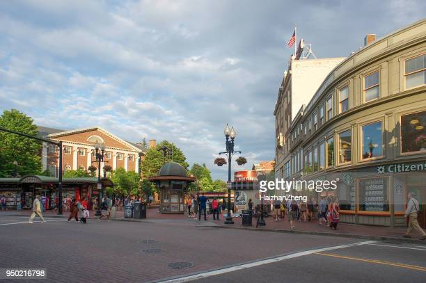 cambridge massachusetts - cambridge massachusetts stock pictures, royalty-free photos & images