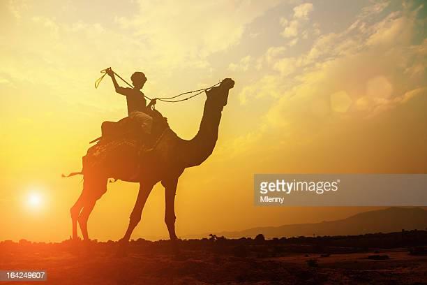 camel und cameleer silhouette bei sonnenuntergang - camel active stock-fotos und bilder