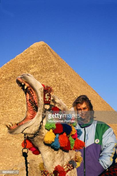 A camel bored after a long day spent posing with tourists yawning A pyramid stands in the background Cairo January 1997