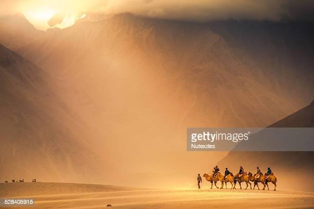 Camel caravan at Nubra valley
