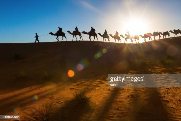 camel caravan going through the desert - camel train stock pictures, royalty-free photos & images