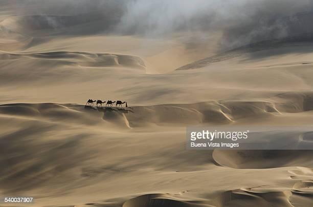 camel caravan in a desert - paisajes de emiratos arabes fotografías e imágenes de stock