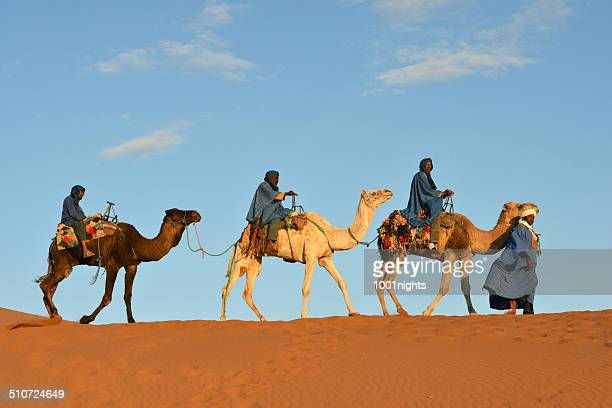 camel caravan in morocco - camel train stock pictures, royalty-free photos & images