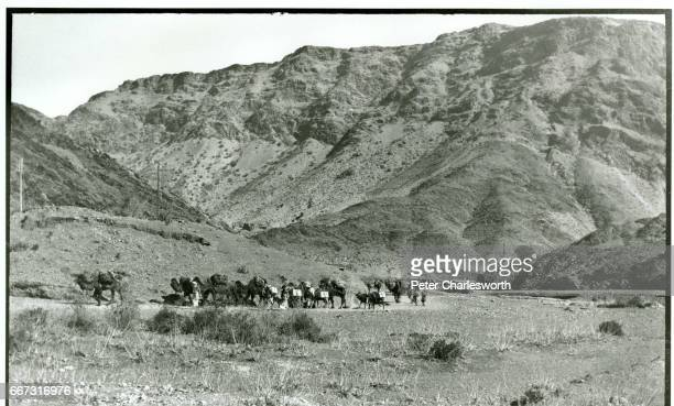 Camel caravan in the pass presumed to be the Khyber Pass Background to this image With the threat of War looming in Europe Edward Fitzgerald...