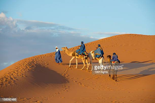 camel caravan in the sahara desert - camel train stock pictures, royalty-free photos & images