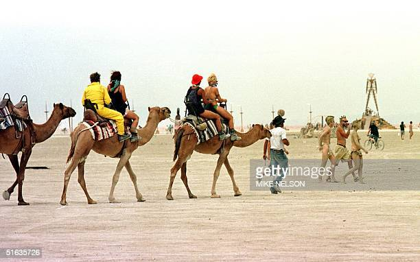 A camel caravan makes its way to the Burning Man statue 05 September as celebrants prepare to burn The Man 06 September at the Burning Man Festival...