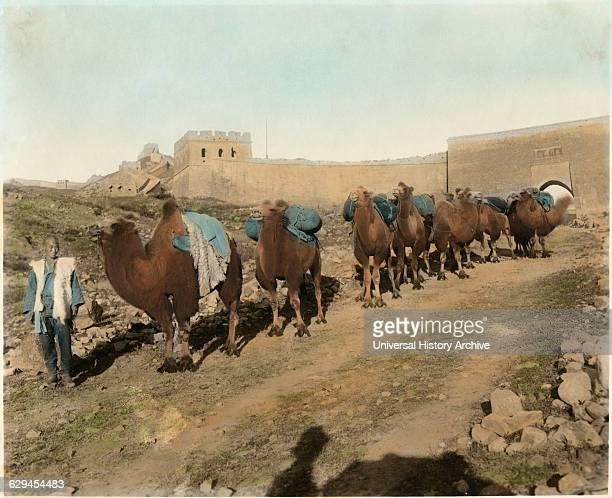 Camel Caravan Passing Great Wall Badaling China circa 1930
