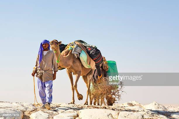 camel caravan - tuareg tribe stock pictures, royalty-free photos & images