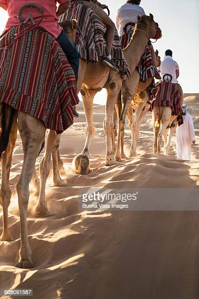 Camel caravan?s shadows in the desert