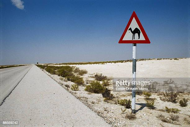 A 'camel crossing' sign in the desert circa 2000