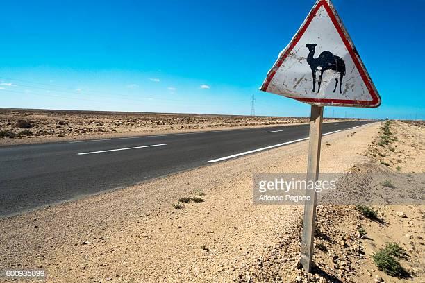 camel crossing sign in Western Sahara desert