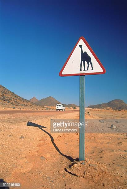 Camel Crossing Sign