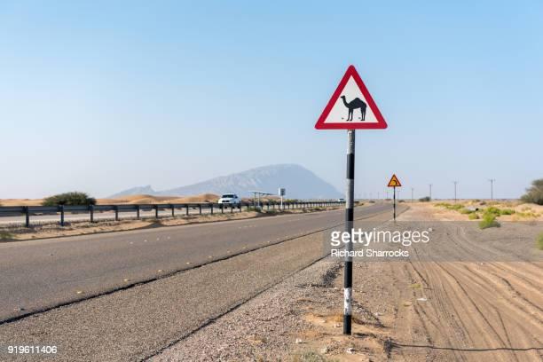 Camel crossing warning sign