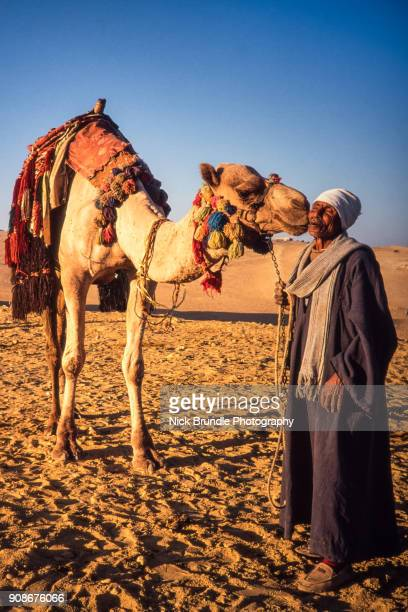 Camel driver, Giza, Egypt