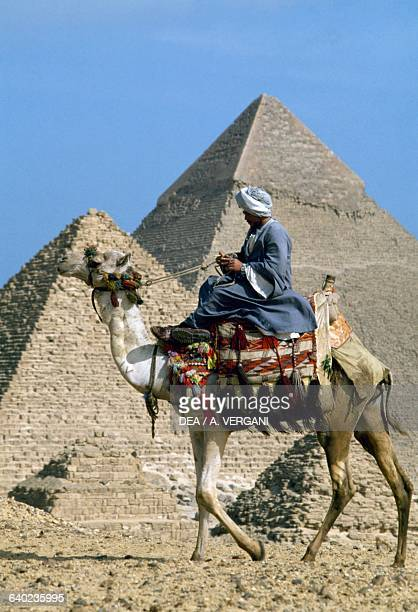 Camel driver in front of one of the pyramids of Giza Middle Nile Egypt