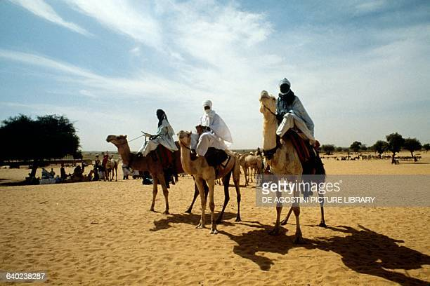 Camel drivers and camels at Markoye market Burkina Faso