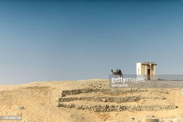 camel for tourist near djoser step pyramid saqqara egypt - death mask of tutankhamen stock pictures, royalty-free photos & images