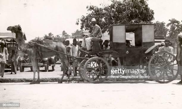 A camel garri and driver at Porbandar in Gujarat India 1930