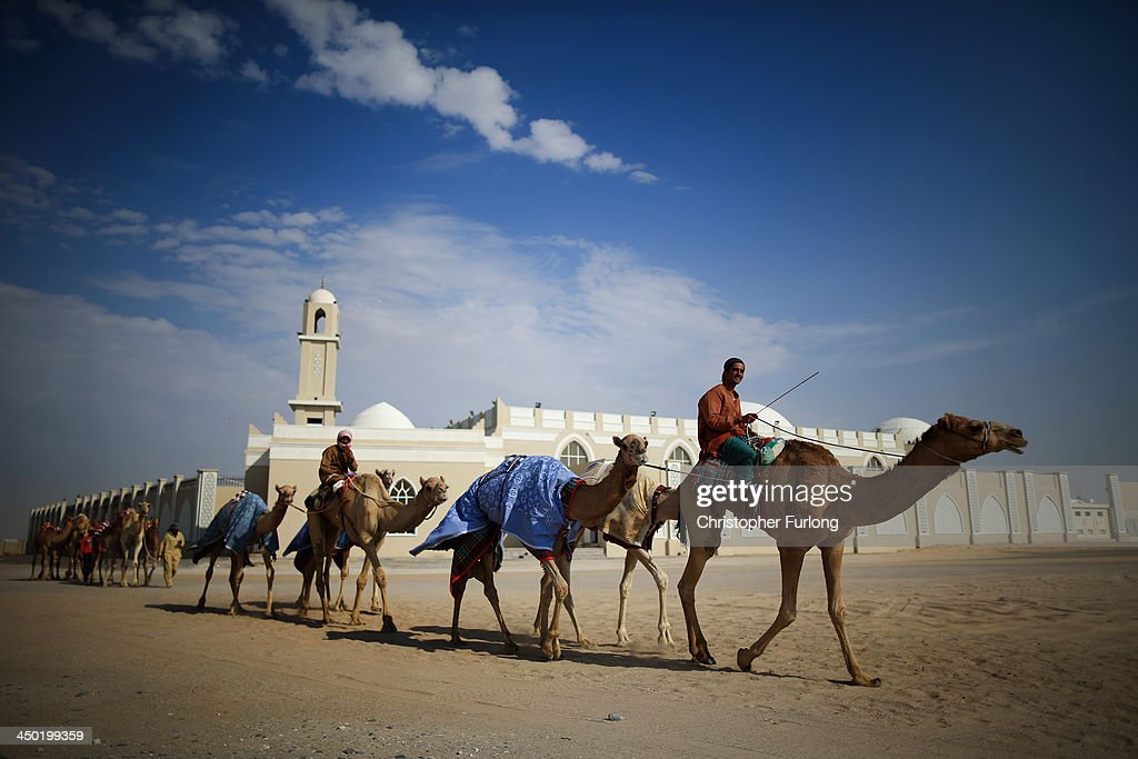 Camel handlers ride past a mosque as they arrive for a morning training session at Dubai Camel Racing Club during the Al Marmoum camel racing season on November 17, 2013 in Dubai, United Arab Emirates. Camel racing is one of the oldest sports in the Middle East. Historically children from India were used as jockeys on the camels until it was outlawed in 2002. Today robot jockeys are used and include shock absorbers and GPS tracking systems. The camel's owners control the robot's whips from their speeding four wheel drives at the side of the track. Throroughbred racing camels can be as valuable as one million US dollars.