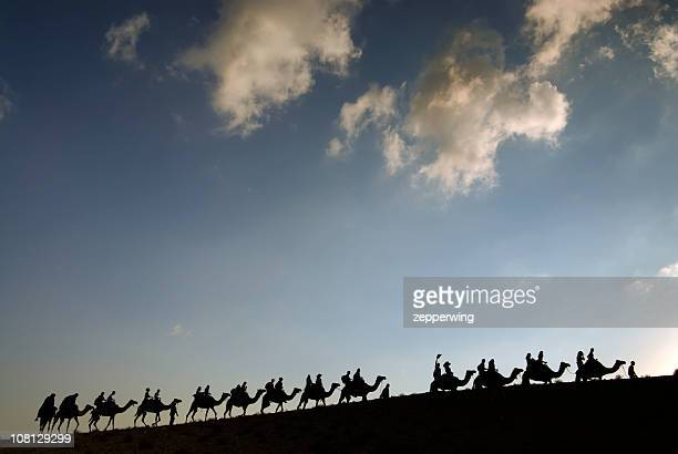 camel line - camel train stock pictures, royalty-free photos & images