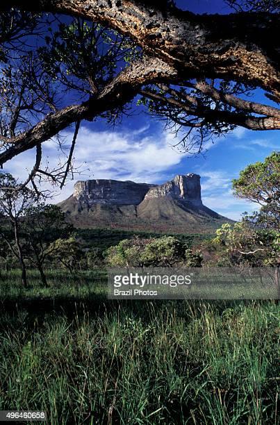 Camel Mountain at Chapada Diamantina in Bahia State Brazil Chapada Diamantina is an erosional landform a natural feature of the earth's surface The...