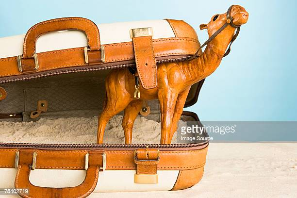 Camel ornament in a suitcase