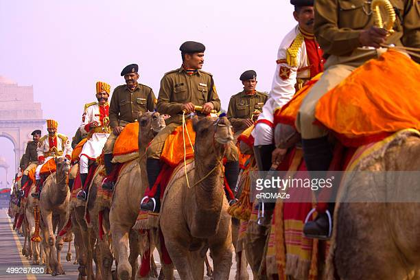 camel regiment - parade stock pictures, royalty-free photos & images