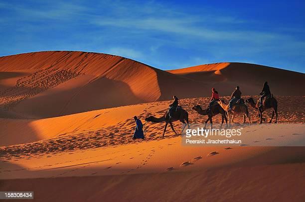 Camel Ride at Sahara Desert