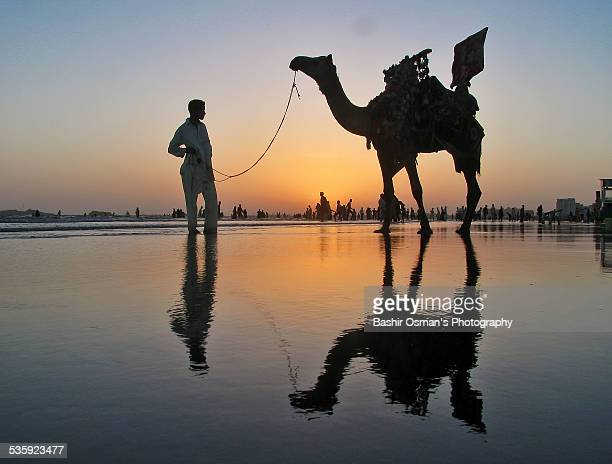 camel ride - pakistani culture stock photos and pictures