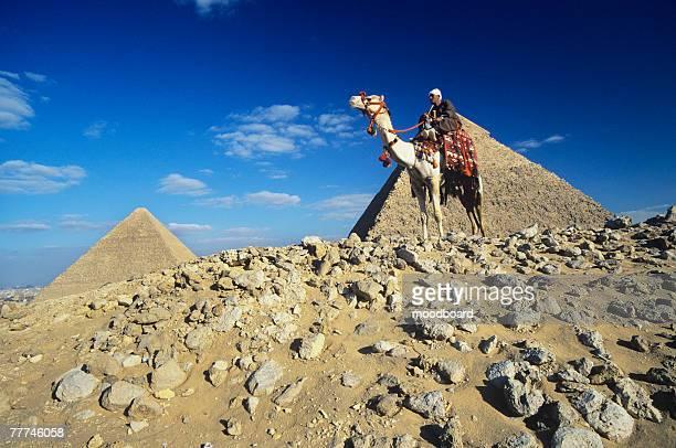 Camel Rider by Pyramids of Giza