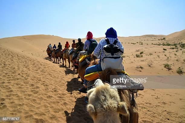Camel riding, Tengger desert Inner Mongolia