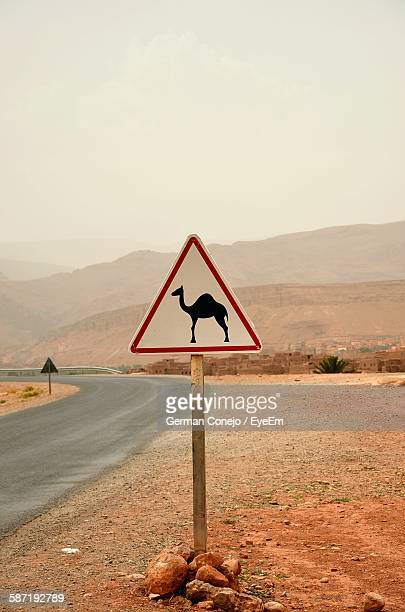 Camel Road Sign On Wooden Post By Road