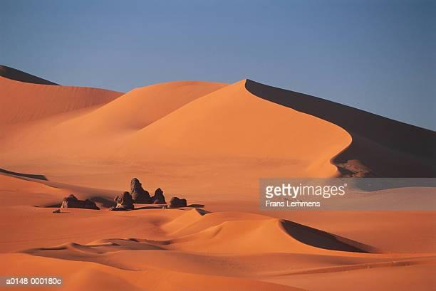 camel train in sahara desert - アルジェリア ストックフォトと画像