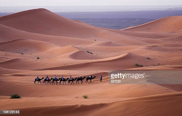 Camel train moving across the Sahara Desert