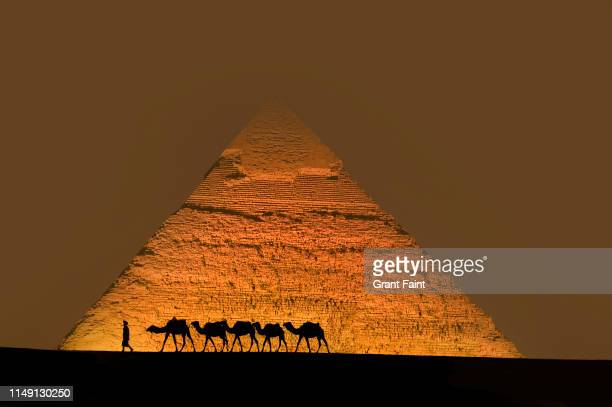 composite image camel train guide walking