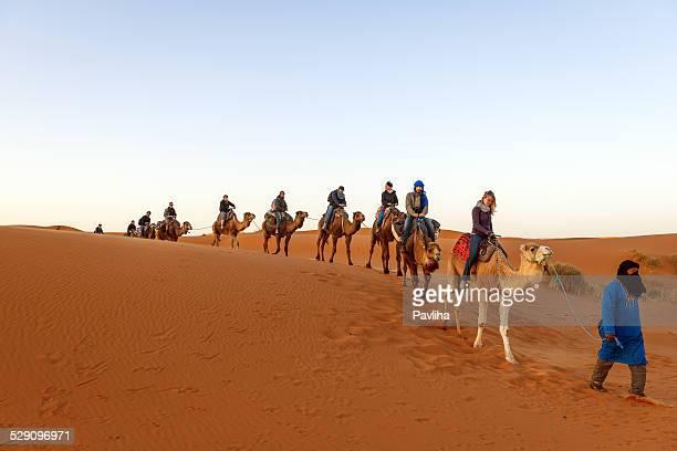 kamel-trekking, erg chebbi-dünen bei sonnenaufgang, marokko, afrika - camel active stock-fotos und bilder