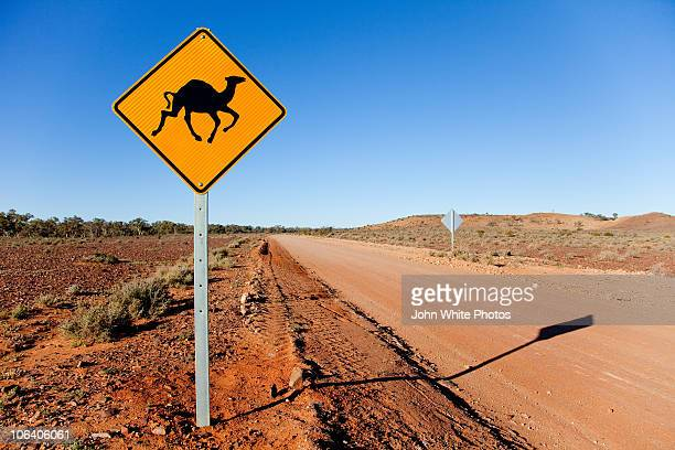Camel warning sign outback Australia