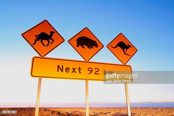 Camel wombat and kangaroo sign. Australia.