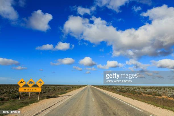 camel, wombat and kangaroo warning sign next to the eyre highway. the nullarbor plain. - animal representation stock pictures, royalty-free photos & images
