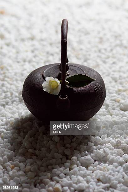 camellia on tea pot - wabi sabi - fotografias e filmes do acervo