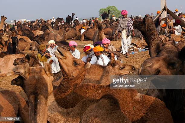CONTENT] Camelmen in their camp during the Pushkar Mela Rajasthan
