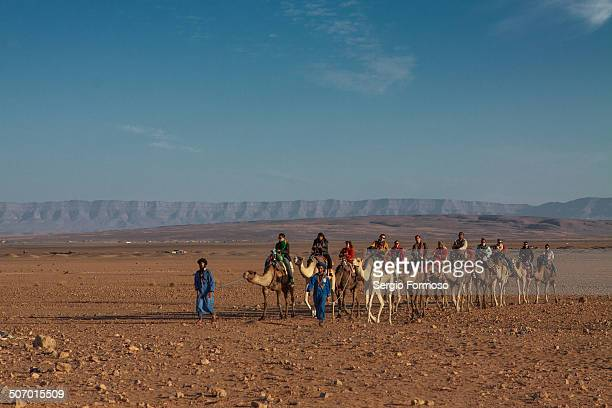Camels in the Sahara dessert with tourists
